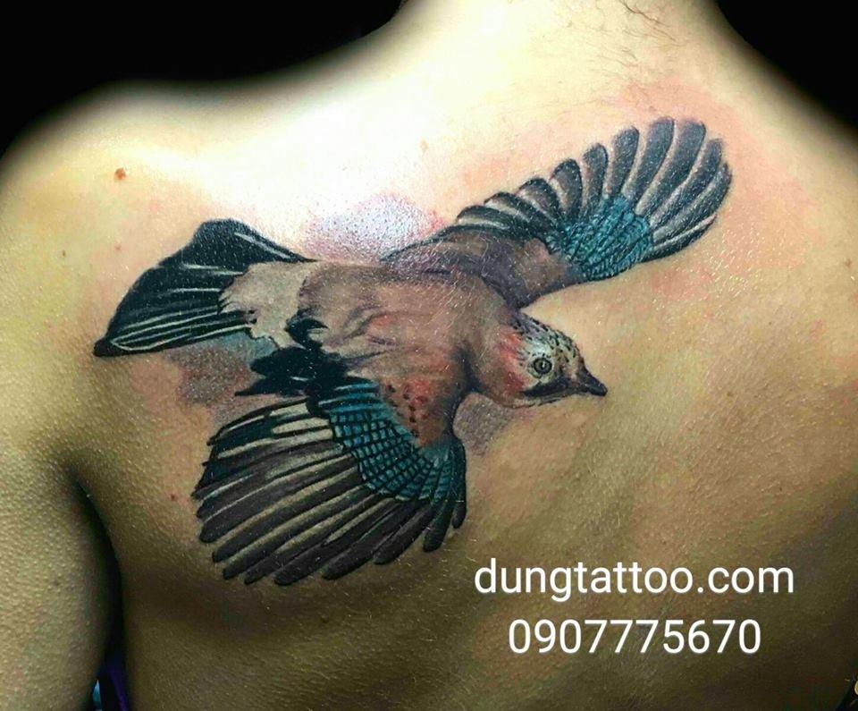 hinh xam chim tattoo bird