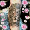 hình xăm đầu sư tử thực hiện tại dũng 0907775670